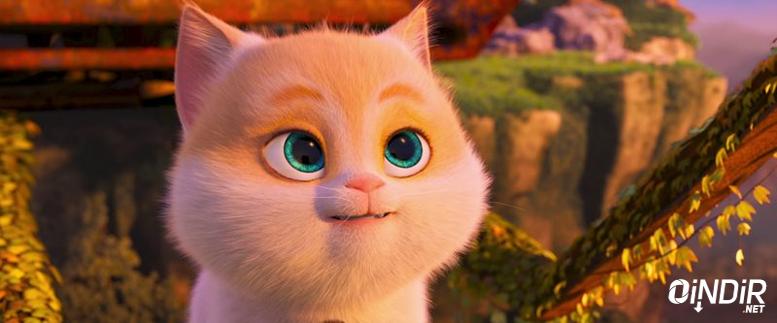 kediler filmi indir