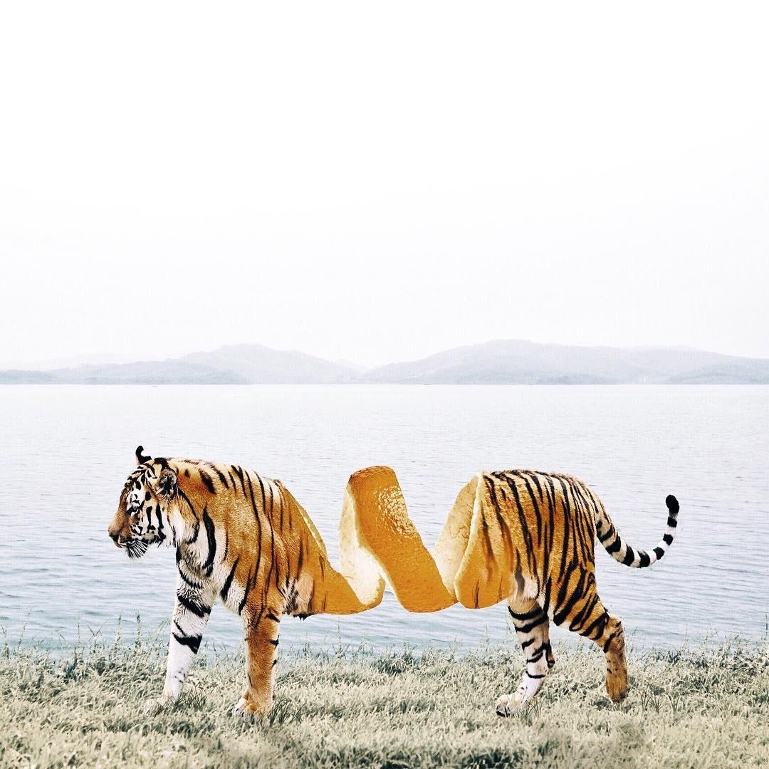 Luisa Avezedo'nun Umulmadık Nesneleri Birleştirerek Yaptığı Olağan Dışı Sanat 29. resim