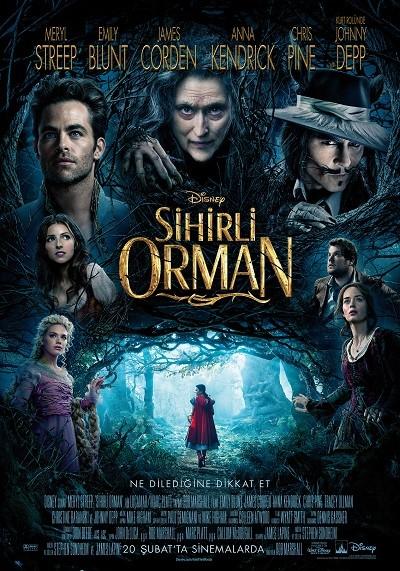 Sihirli Orman 2014 (BRRip XviD) Türkçe Dublaj indir