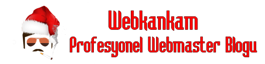 Profesyonel Webmaster Blogu