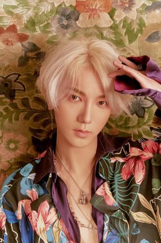 Super Junior - LO SIENTO Photoshoot 16nW0p