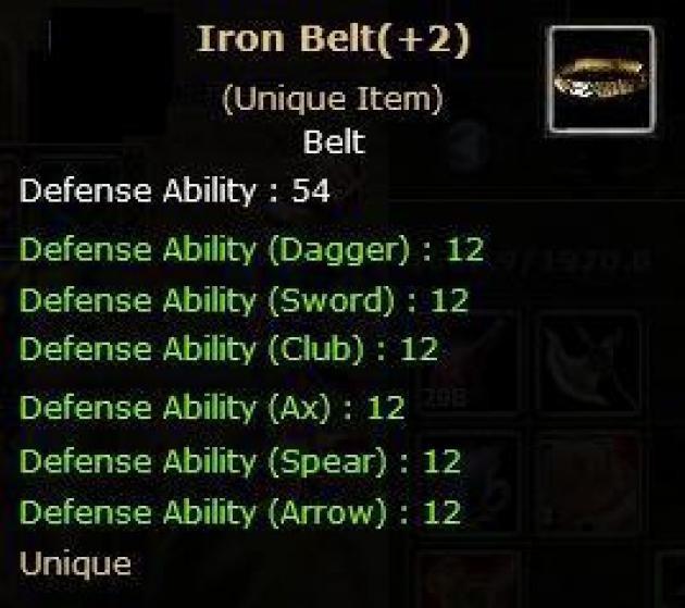 +2 Iron Belt