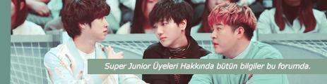 Super Junior Members (Super Junior Üyeleri)