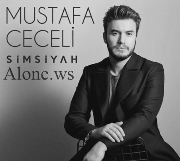 Mustafa Ceceli - Ne Haber Asktan