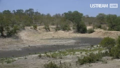 Djuma Africa