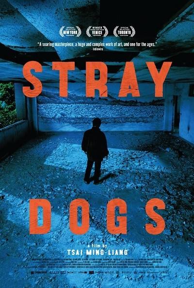 Sessiz Köpekler - Stray Dogs  (2013) BRRip XviD Türkçe Dublaj - Tek Link
