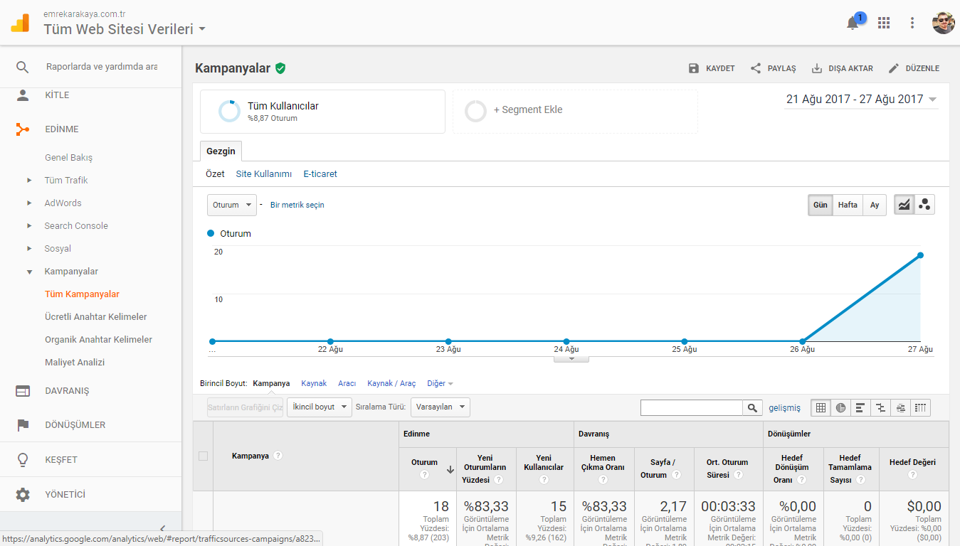 Google Analytics Kampanya Grafiği