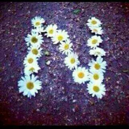 Hərflər aləmindən [N ♥ K]