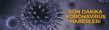 korona virüs