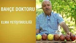 Elma Yetiştiriciliği