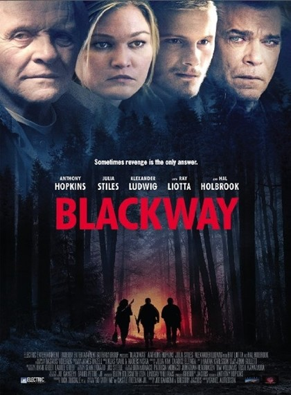 Blackway – Go With Me 2015 BRRip XviD Türkçe Dublaj – Film indir