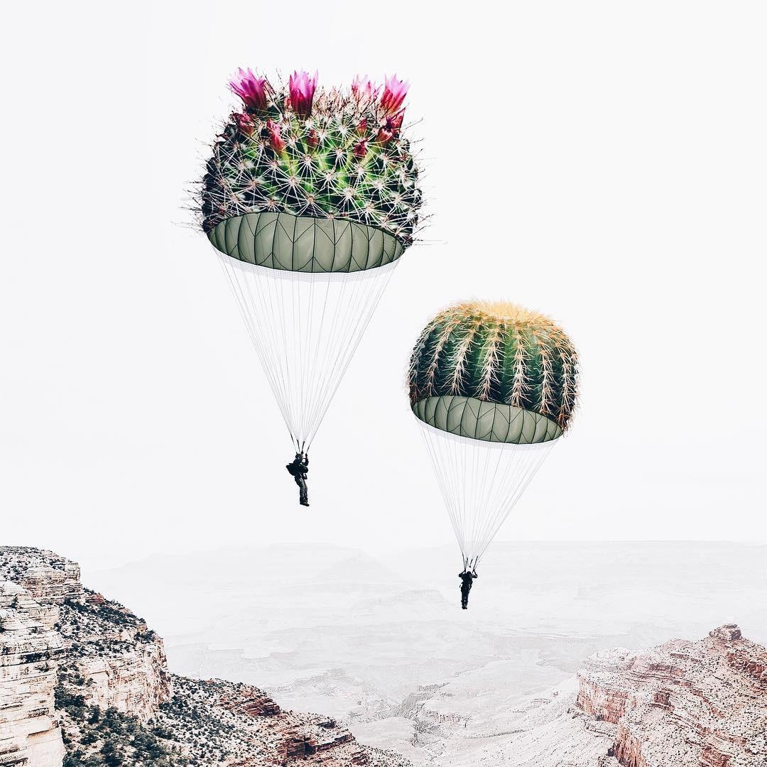 Luisa Avezedo'nun Umulmadık Nesneleri Birleştirerek Yaptığı Olağan Dışı Sanat 9. resim