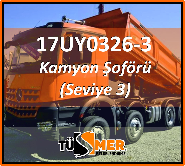 17UY0326-3 Kamyon Şoförü (Seviye 3)