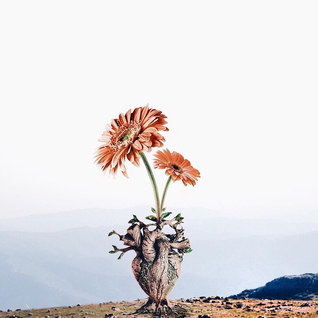 Luisa Avezedo'nun Umulmadık Nesneleri Birleştirerek Yaptığı Olağan Dışı Sanat 20. resim