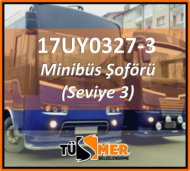 17UY0327-3 Minibüs Şoförü (Seviye 3)
