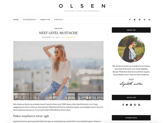 Wordpress Olsen Light Teması