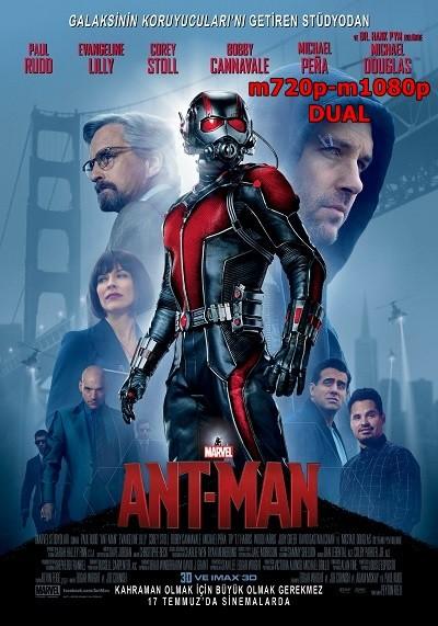Karınca Adam – Ant-Man 2015 720p-m1080p Mkv DuaL TR-EN – Tek Link