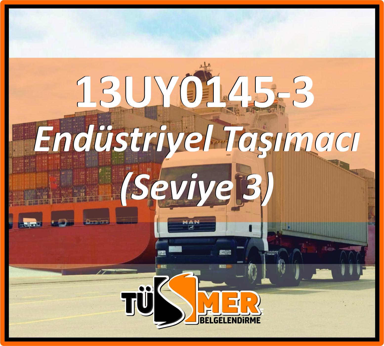 13UY0145-3 Endüstriyel Taşımacı (Seviye 3)