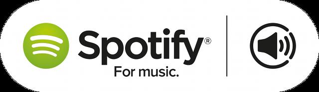 Spotify yüksek ses kalitesi