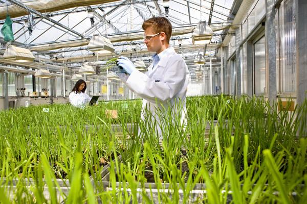 Agro kimya, agrokimya, Agro kimya nedir, Agro kimya çalışma alanları