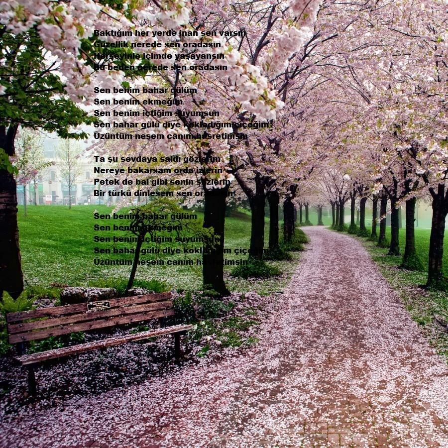 Karma REsimler - Sayfa 19 9mBoq9