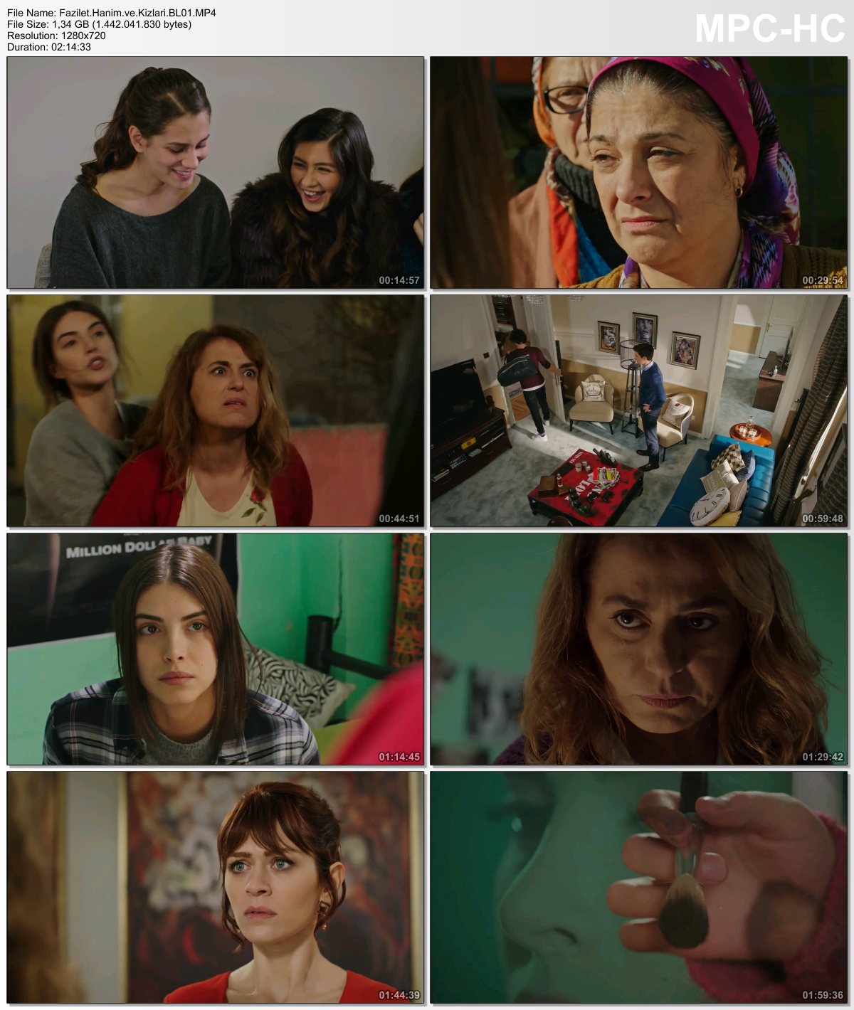 Fazilet Hanım ve Kızları 41.Bölüm (HD - x264 - 1080p) Tüm Bölümler - okaann27