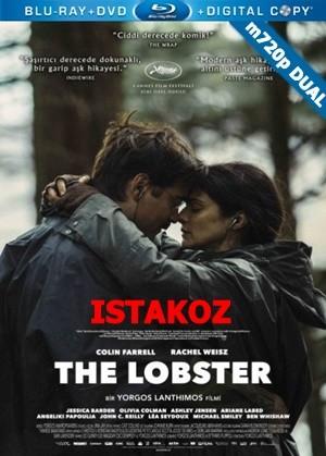 Istakoz - The Lobster | 2015 | m720p Mkv | DUAL TR-EN - Teklink indir