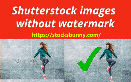 Shutterstock Images Downloader Without Watermark