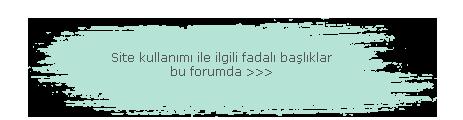 Forum Kullanımı