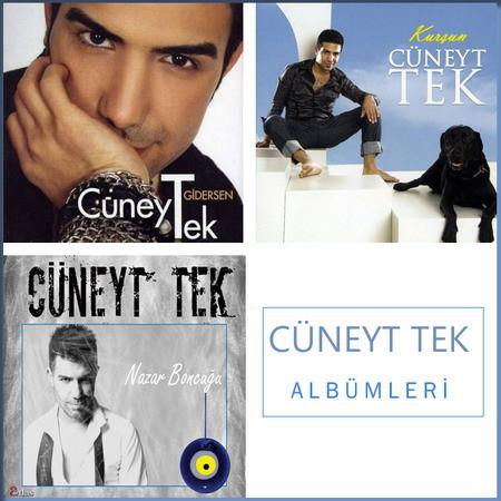 Cüneyt Tek - Albümleri / Diskografi (HQ)