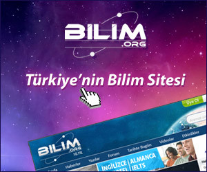 Bilim