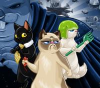 savasan kediler oyunu