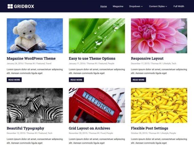 Gridbox Blog Teması