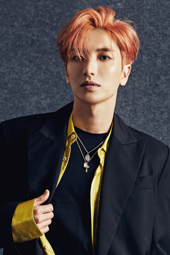 Super Junior - Play Album Photoshoot DYERNz
