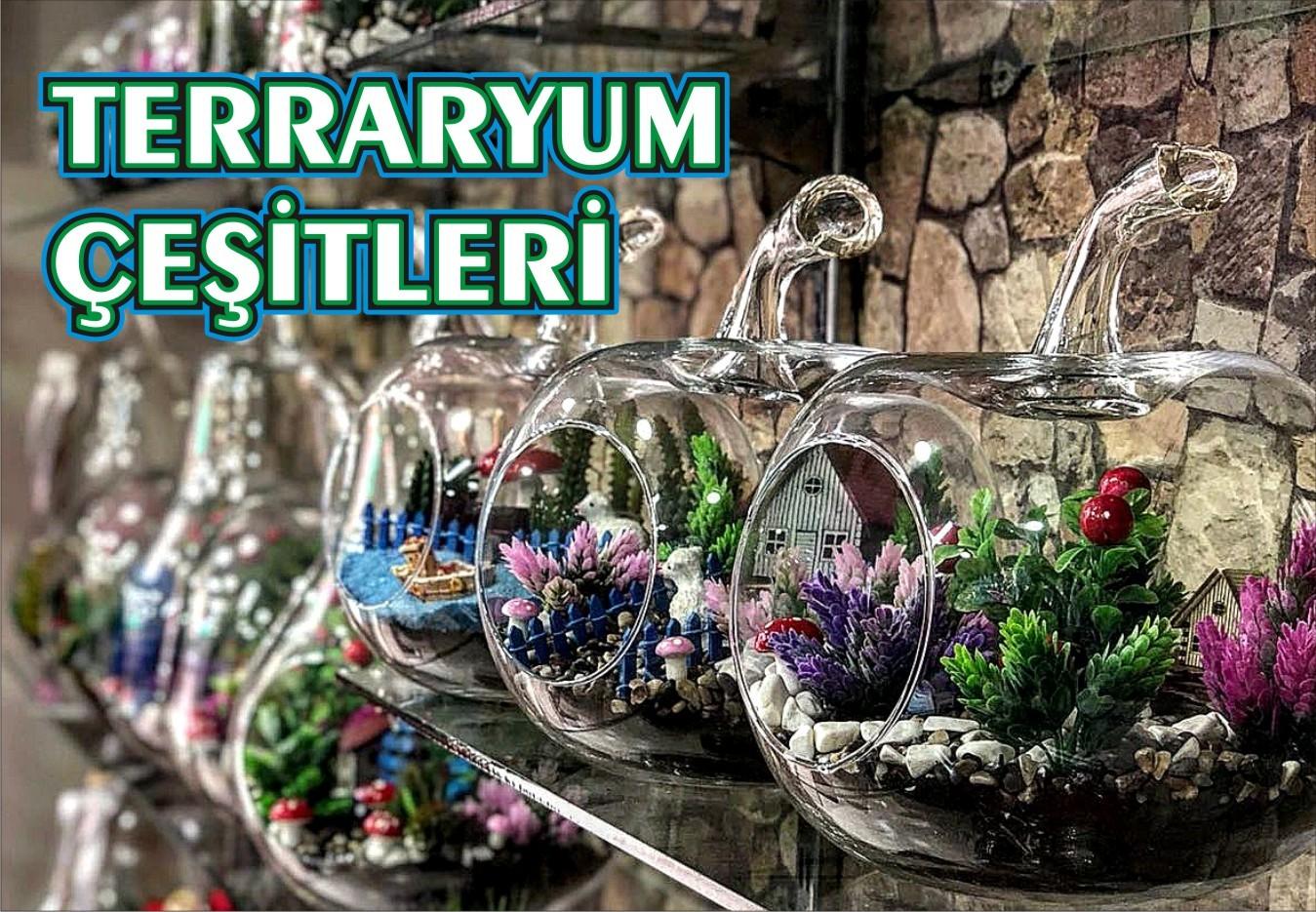 Terraryum