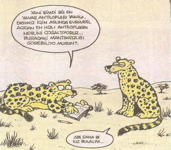 Dl7yd3 - Karikatürler .. :)