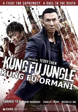 Kung Fu Ormanı – Kung Fu Jungle 2014 BRRip XviD Türkçe Dublaj – Tek Link