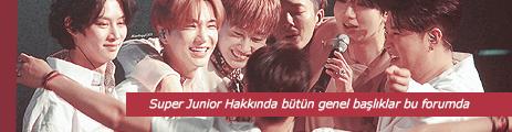 All About Super Junior (Super Junior Hakkında Her şey)