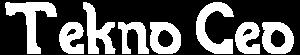 TeknoCeo - Teknoloji ve Yönetim