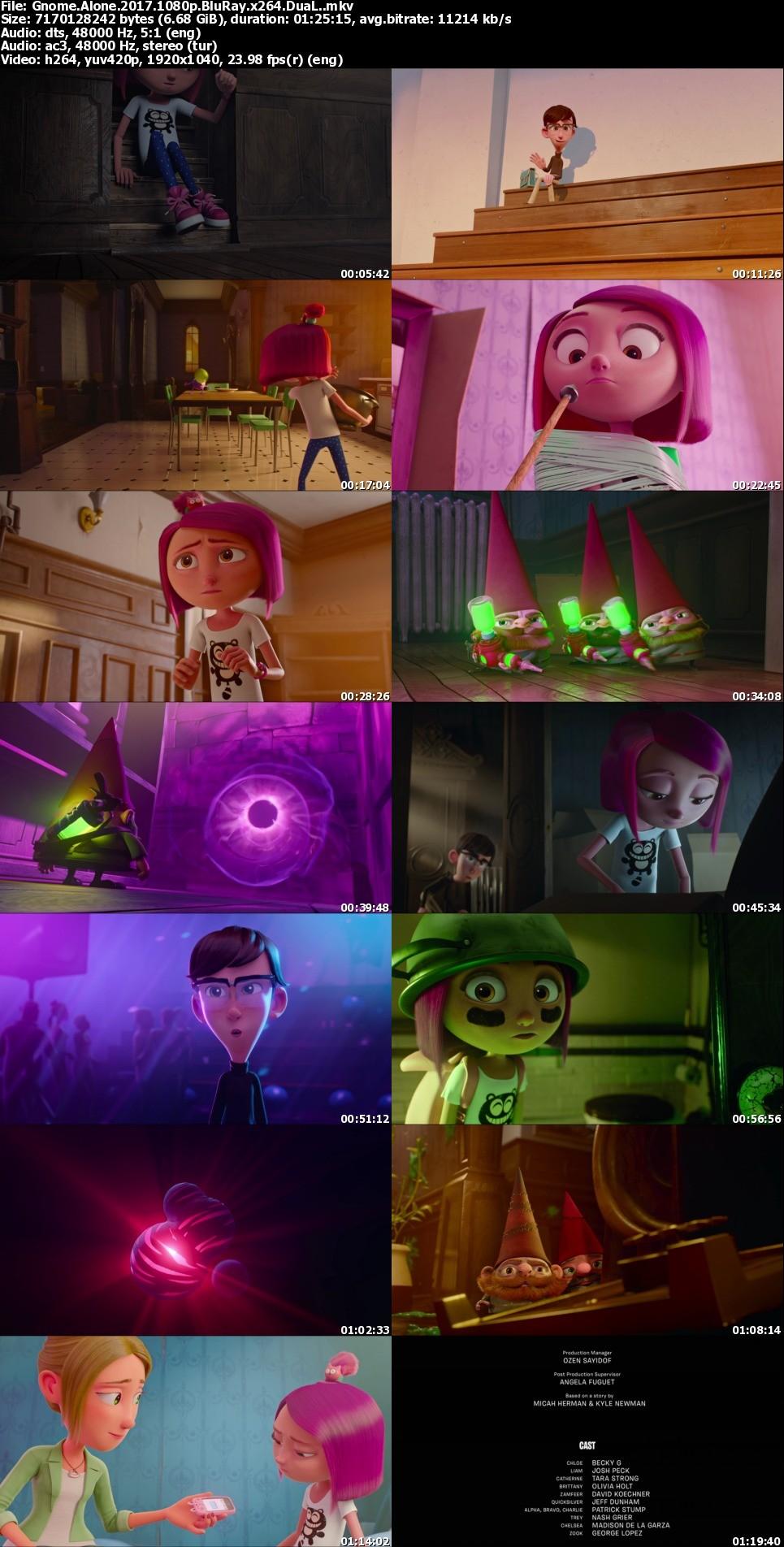 Küçük Kahramanlar - Gnome Alone - 2017 - 1080p / TR / Dublaj - DuaL (TR-EN)