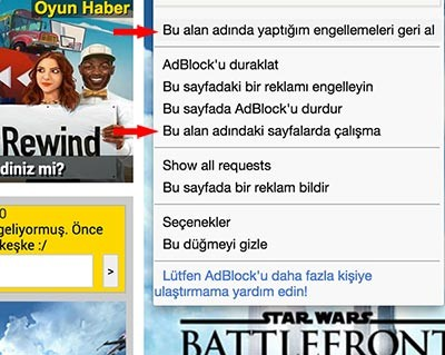 adblock ayarları ayrıntıları seçenekleri