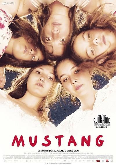 Mustang | 2015 | DVDRip XviD - Tek Link