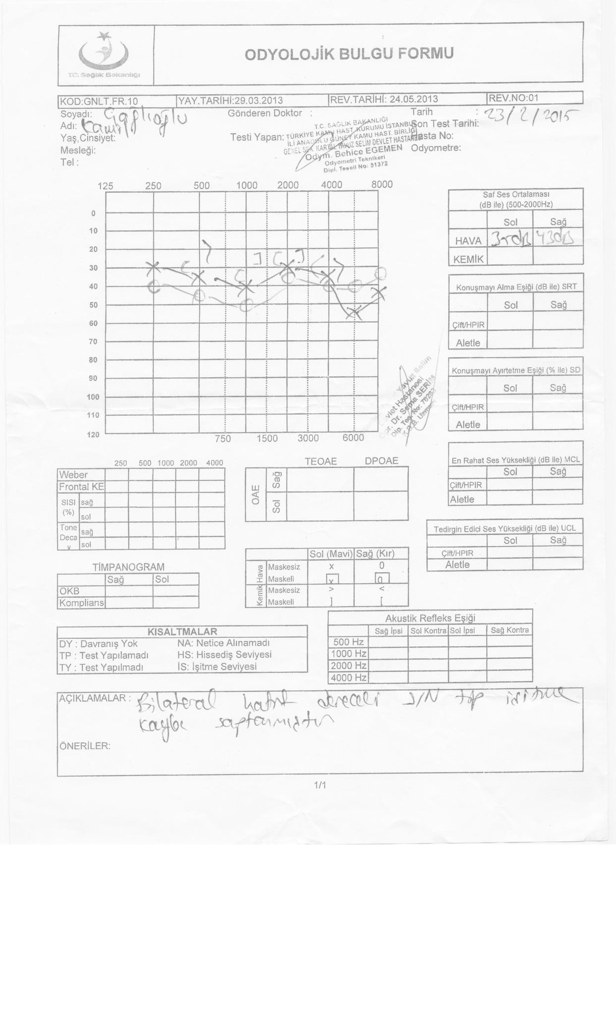 GvDYO2 - İşitme testinden özür oranı hesaplanması