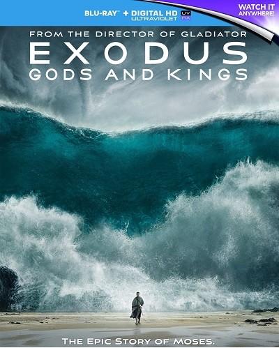Göç: Tanrılar ve Krallar 2014  m1080p 3D HSBS BluRay x264  Türkçe Dublaj - Tek Link