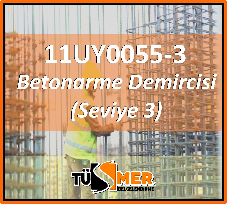 11UY0055-3 Betonarme Demircisi (Seviye 3)