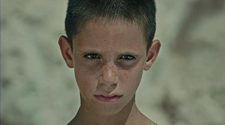 Memleket 2016 ( HDRip XviD ) Yerli Film - Tek Link