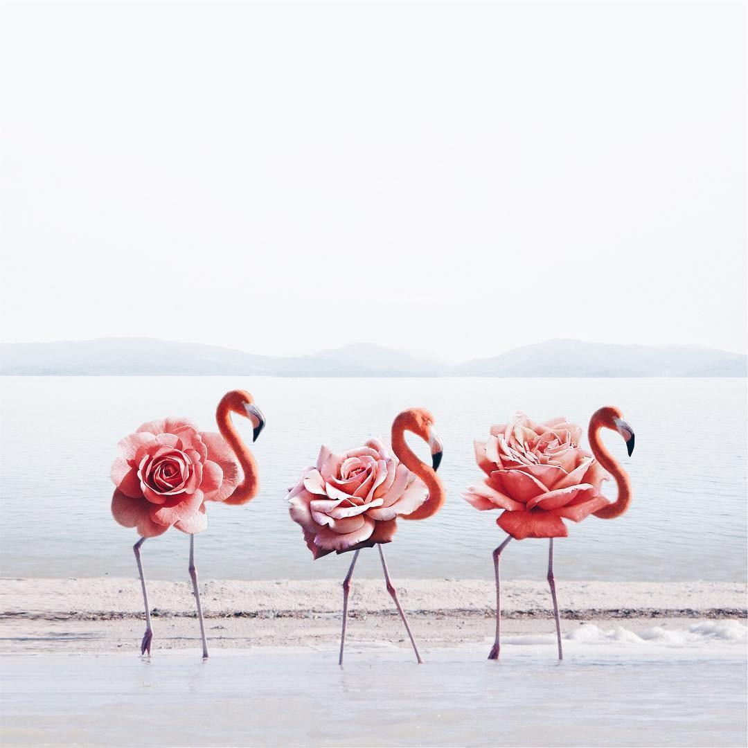 Luisa Avezedo'nun Umulmadık Nesneleri Birleştirerek Yaptığı Olağan Dışı Sanat 10. resim