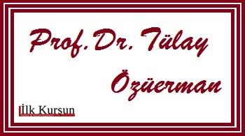 Prof. Dr. Tülay ÖZÜERMAN: Okunoshima 8