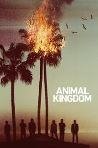 Animal Kingdom 2016 1. Sezon – HD x264 – 720p Güncel Tüm Bölümleri – Yabancı Dizi indir
