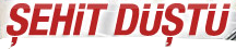Myfonts.Com �stekleri